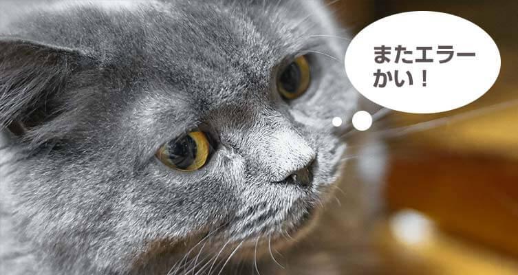 ブログ用素材制作8